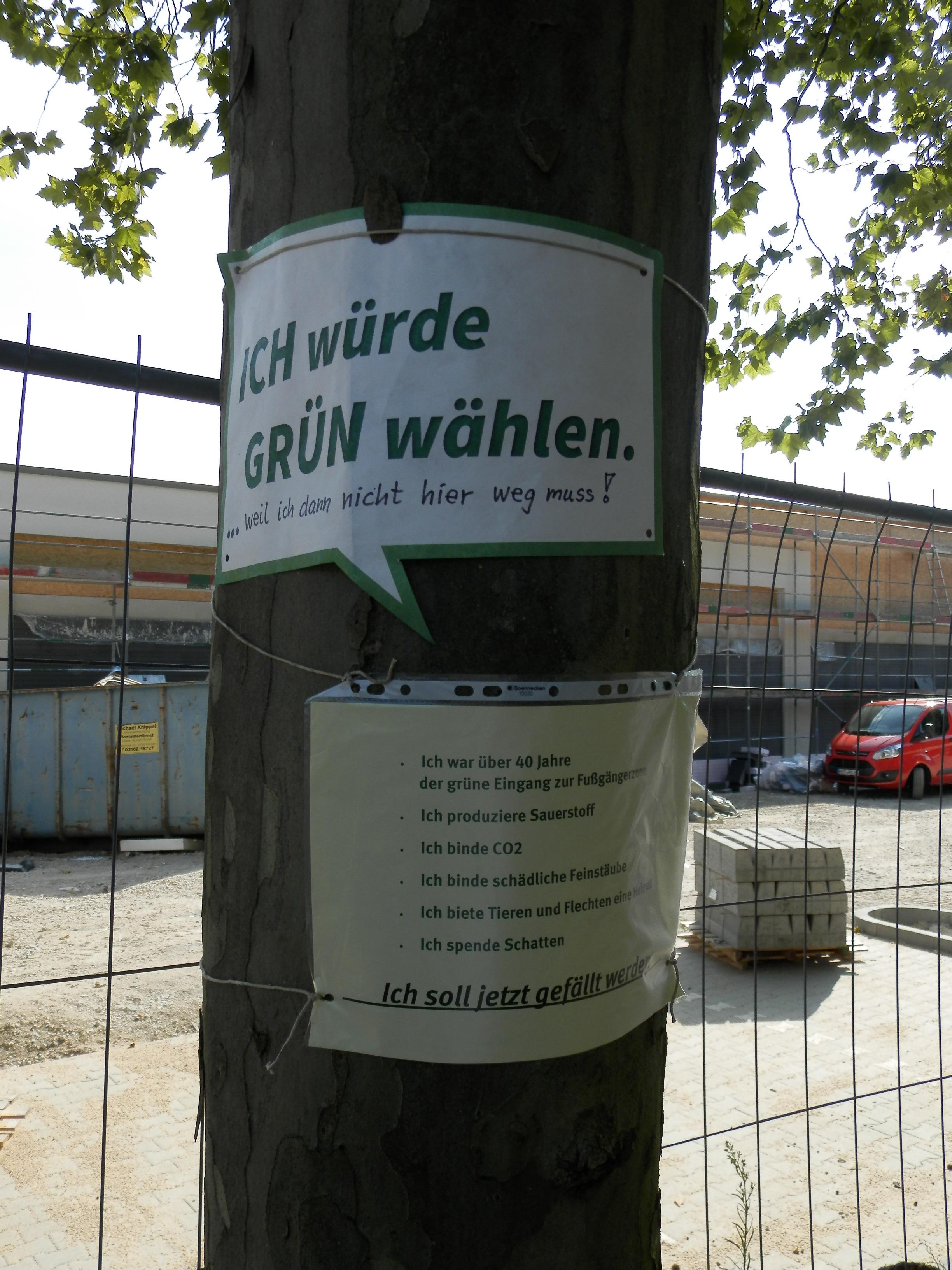 Protestaktion gegen Platanen-Fällung in Lobberich